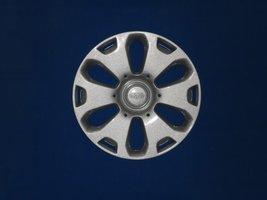 Wieldoppen Ford Fiesta 14 inch   FRD48014